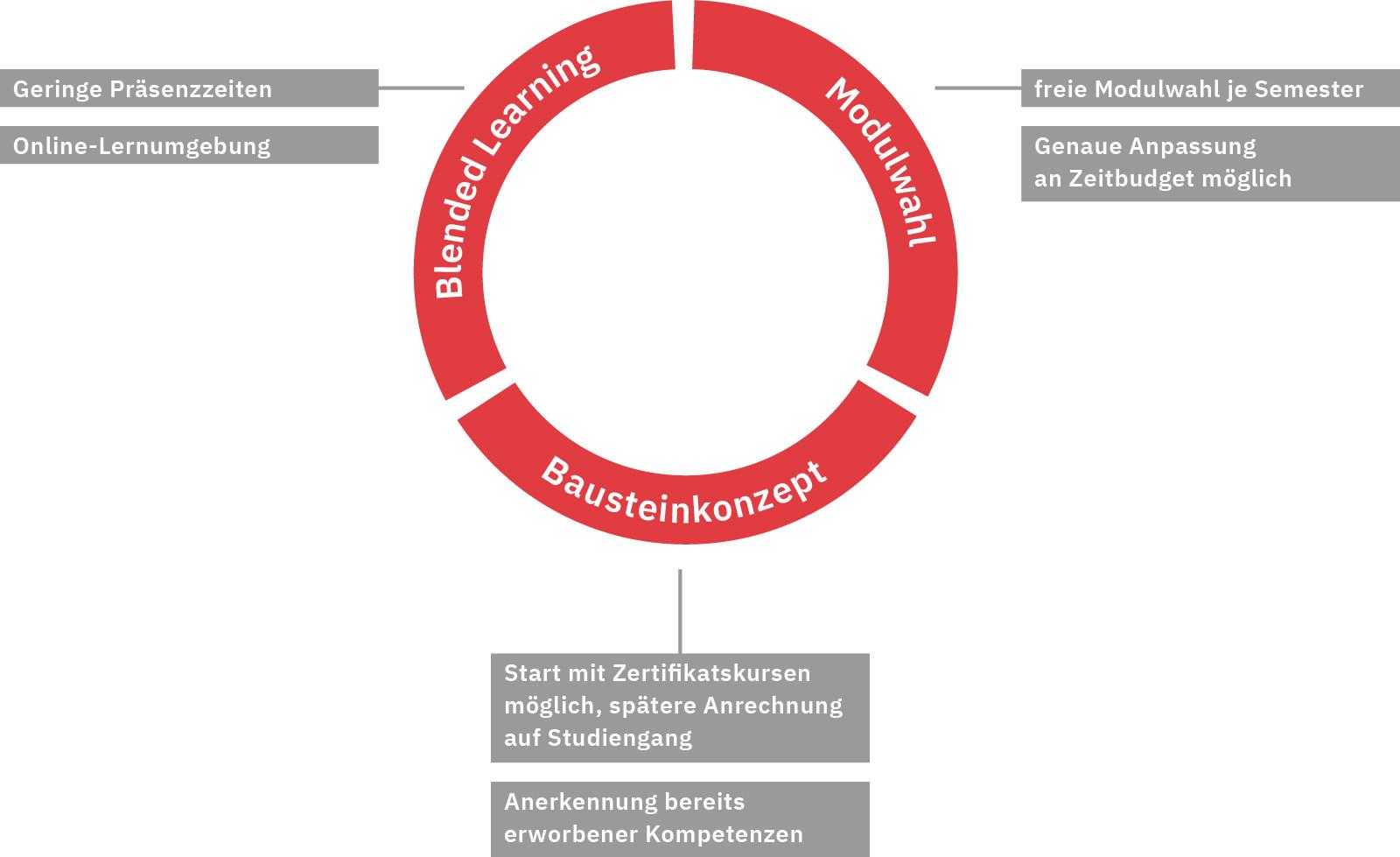Grafik Weiterbildungskonzept SAPS